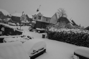 a view of the snow from my house.
