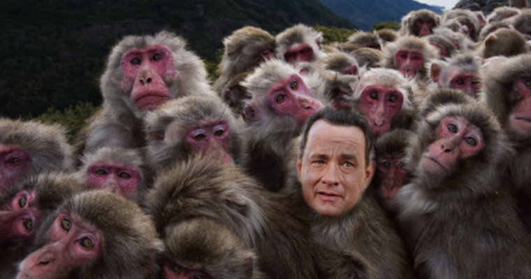 BEST NEW TUMBLR FIND – TOM HANKS IS A LOT OF ANIMALS ...