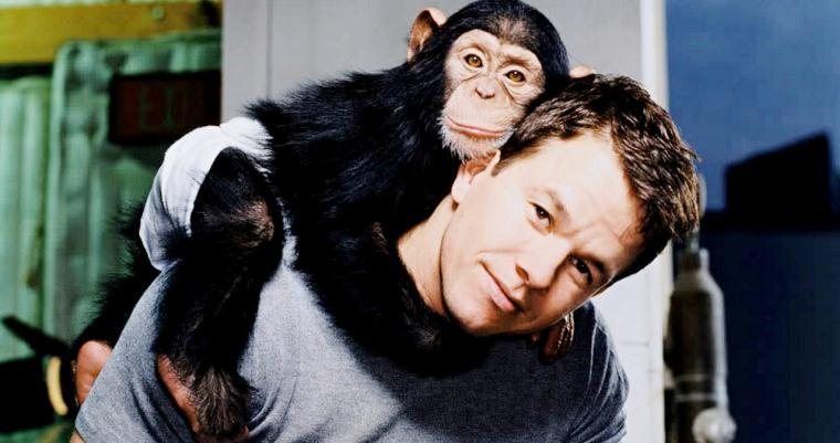 Marky Mark and the Monkey Bunch