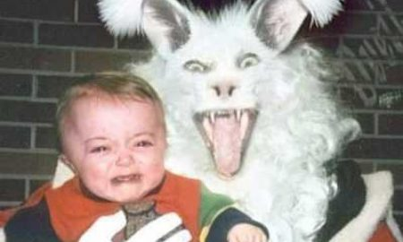 Scary bunny featured