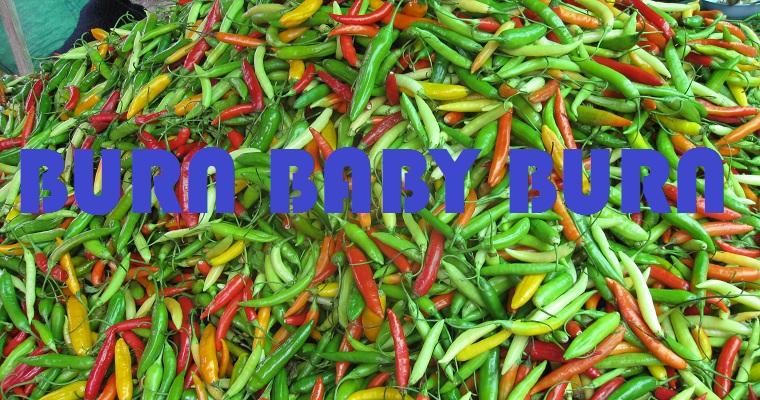 Chilli Selection Burn