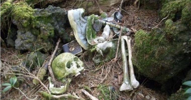 Aokigahara Skull and Bones