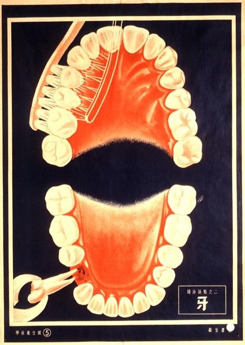 Japanese Dentist