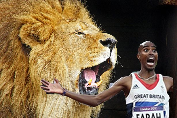 Photo shop of Farah and the lion