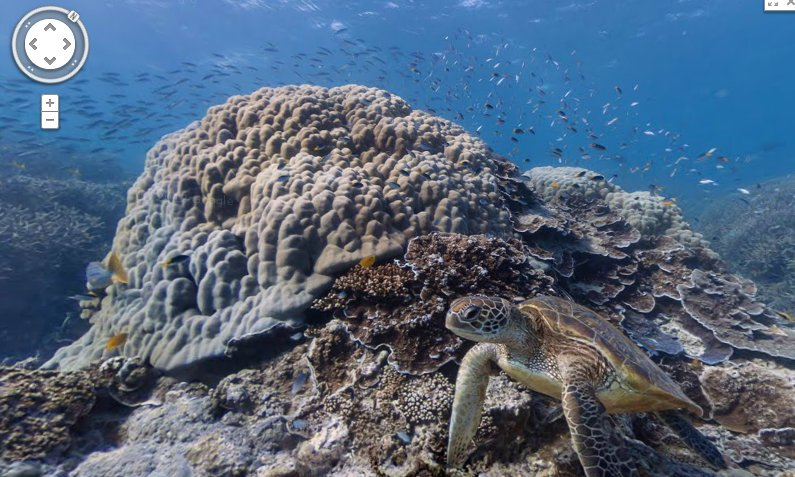 Chill under the ocean with google underwater street view sick chirpse google street view technology to map famous and less known wonders of the world six locations were used including the great barrier reef and the gumiabroncs Images