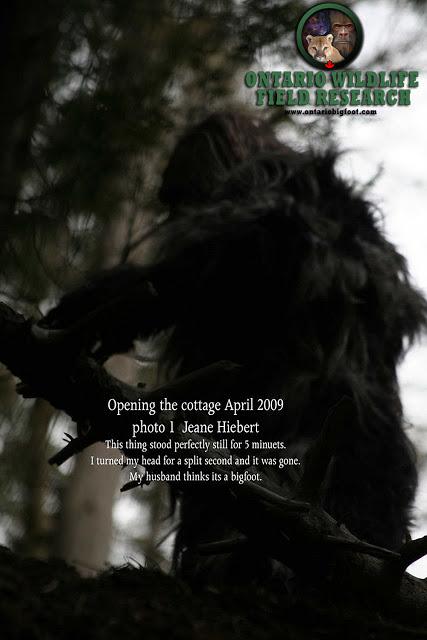 Temagami Ontario Bigfoot