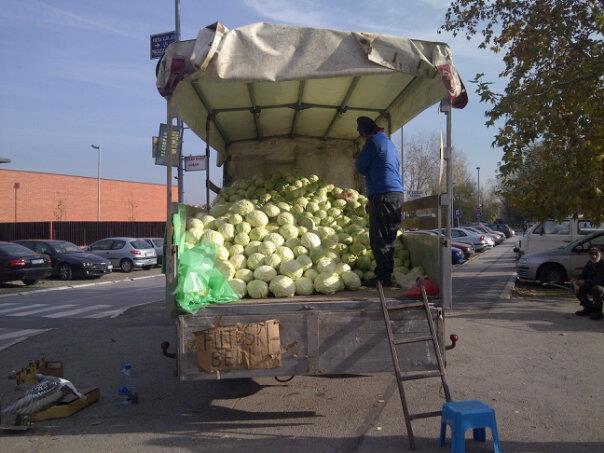 Serbian Cabbage