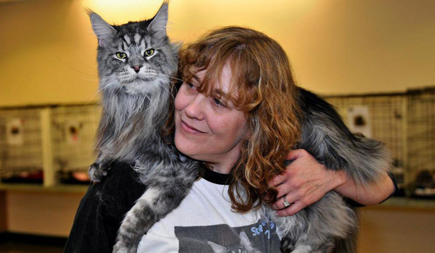 so as well as being the worlds longest domestic cat stewie was also an inspirational public figure who did as much to help others as he could