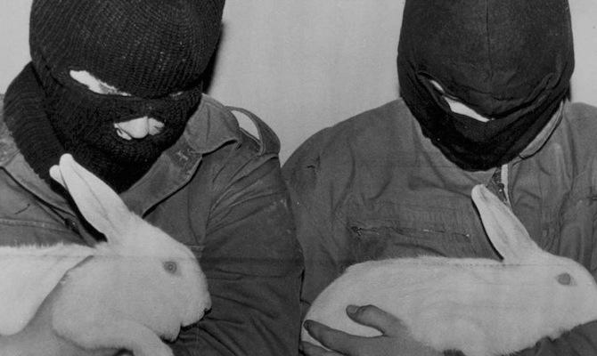 Animal Testing Banned