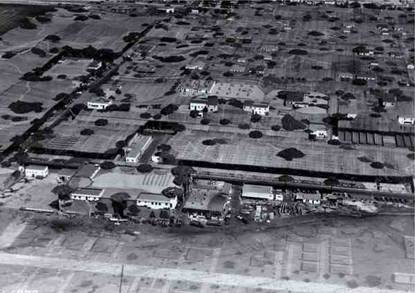 Camouflaged Town - Lockheed Plant