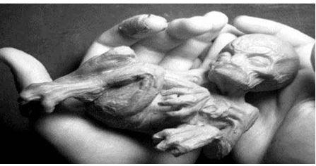 Russian Alien Body