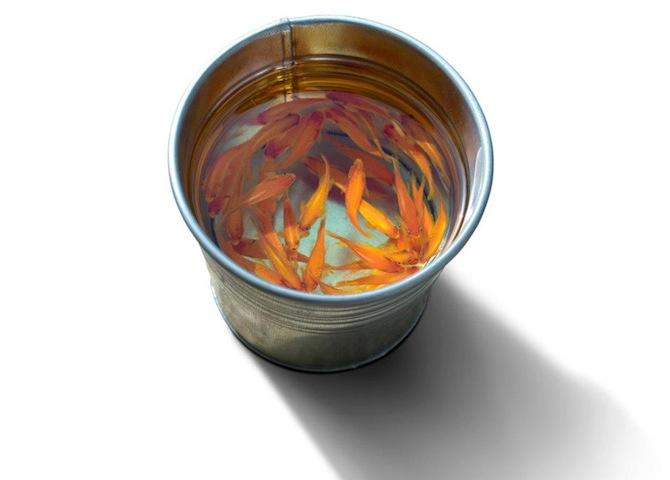 Keng Lye Goldfish Bucket