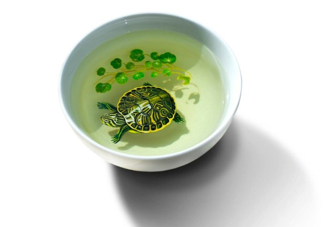 Keng Lye Turtle