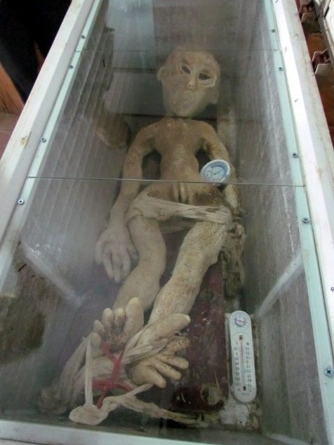 Mr Li - China Alien In Freezer Arrest