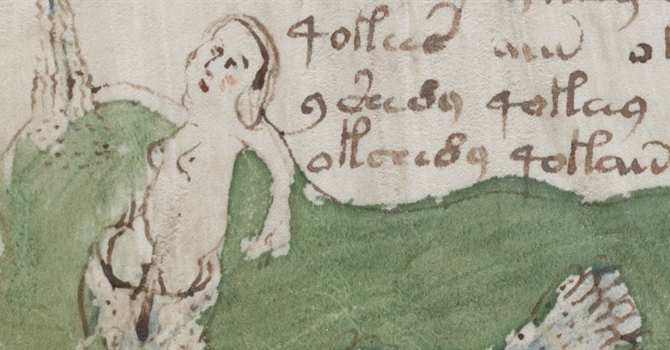 Voynich Manuscript - Woman Naked Close Up