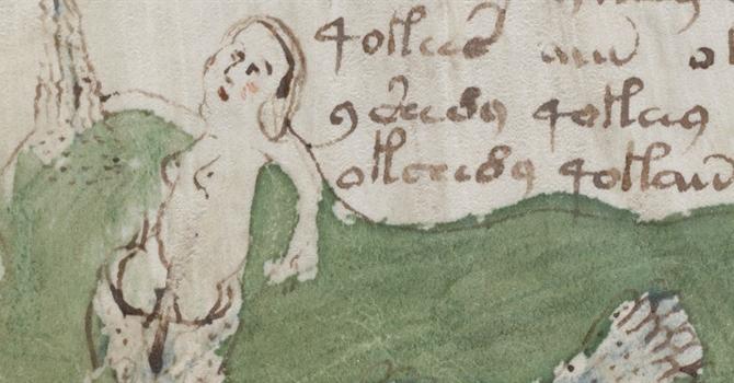 Voynich Manuscript - Woman Naked Close Up