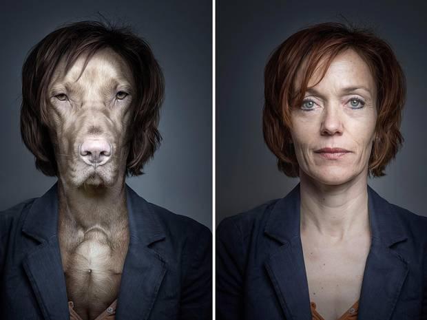 underdogs photo series