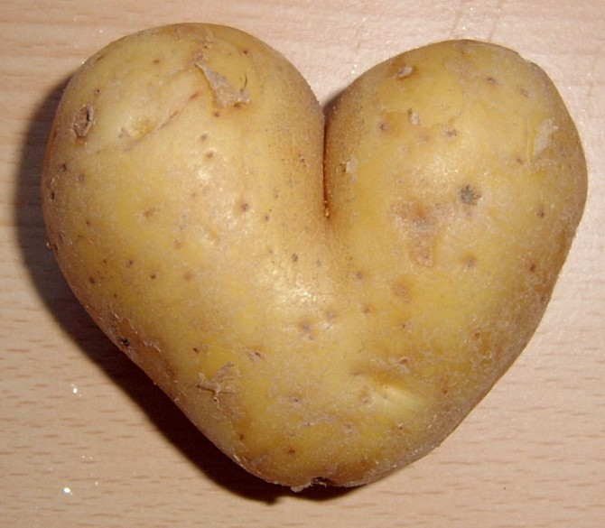 Nothing Is Boring - History of the Potato - Heart Shaped Mutant