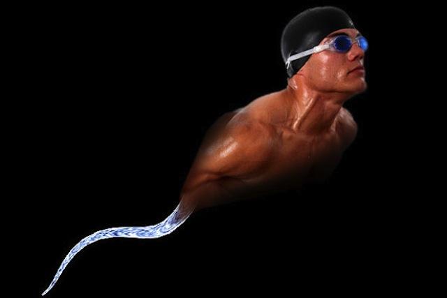 Should swimming sperm video