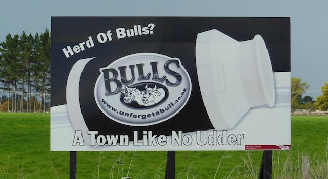 Bulls Featured