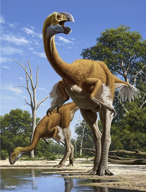 Dinosaur - Weirdest Strangest Coolest - Gigantoraptor