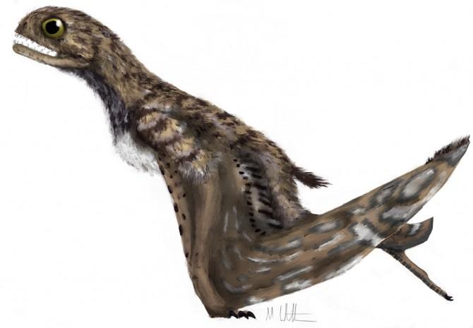Dinosaur - Weirdest Strangest Coolest - Jeholopterus painting
