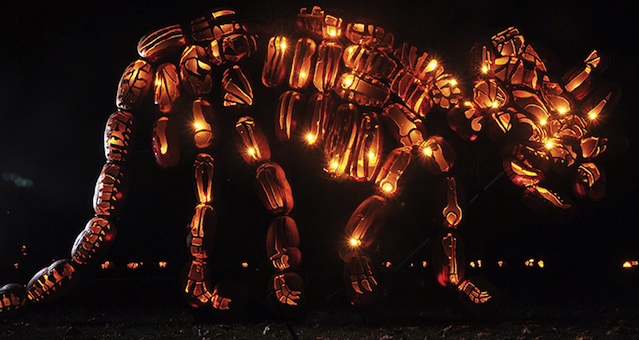Great Jack O Lantern Blaze Featured