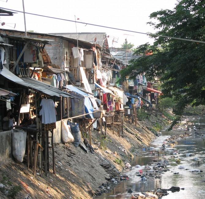urbanization in third world countries essays