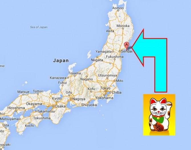 Japan Cat Island Tour