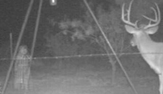 ghost-deer-cam-3