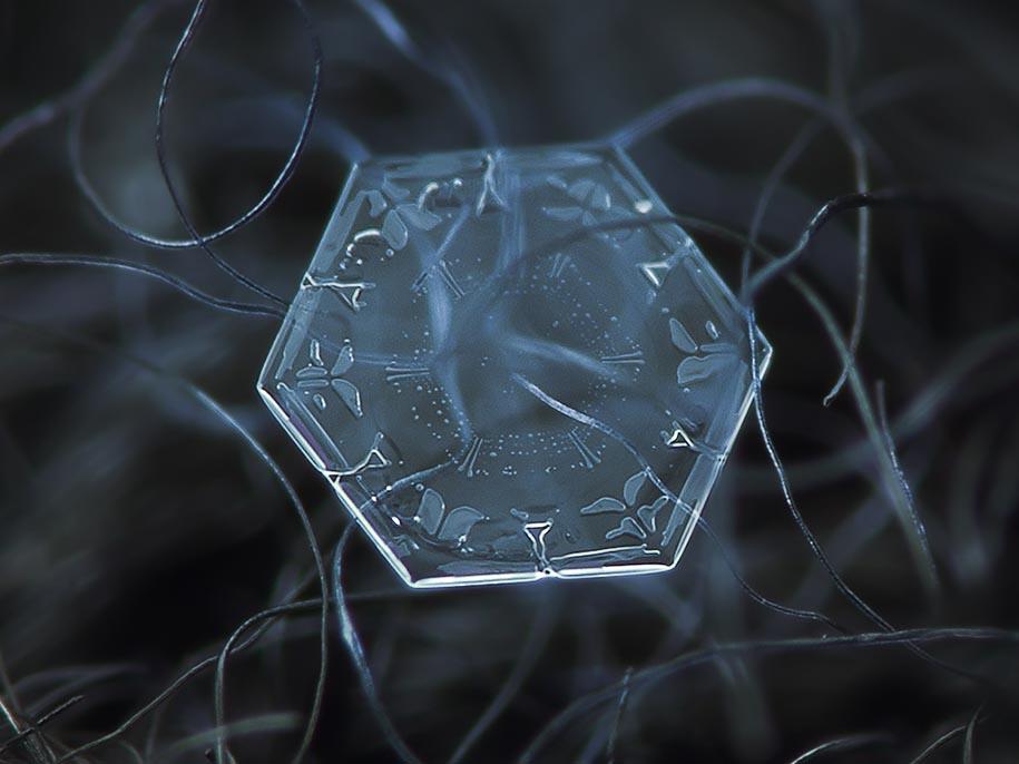Snowflake Photograph 12