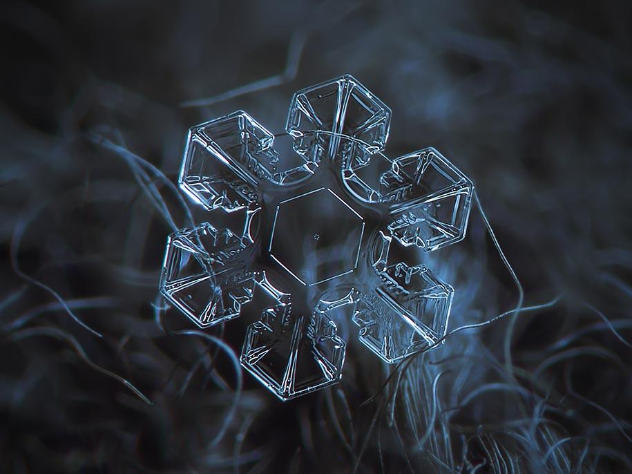 Snowflake Photograph 2