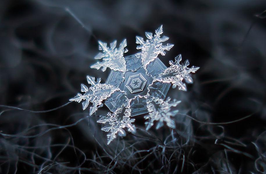 Snowflake Photography 1