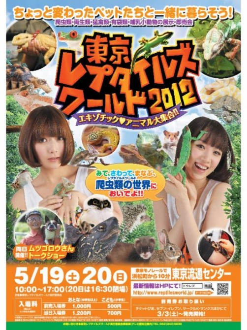 Weird Theme Restaurant - Japan - Yakohama Reptile Cafe - Sub Tropical