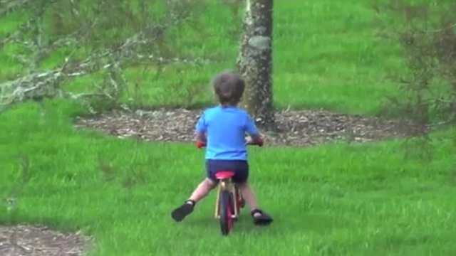 video  dad laughs hysterically as son rides bike into tree  u2013 sick chirpse