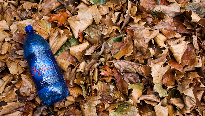 Frosty Jack's in Leaves