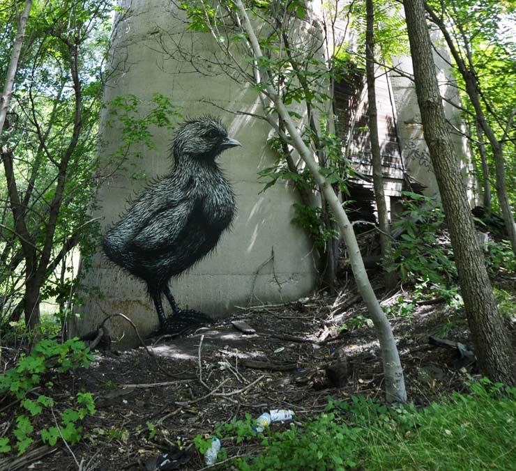 brooklyn-street-art-roa-2013-rochester-web-1