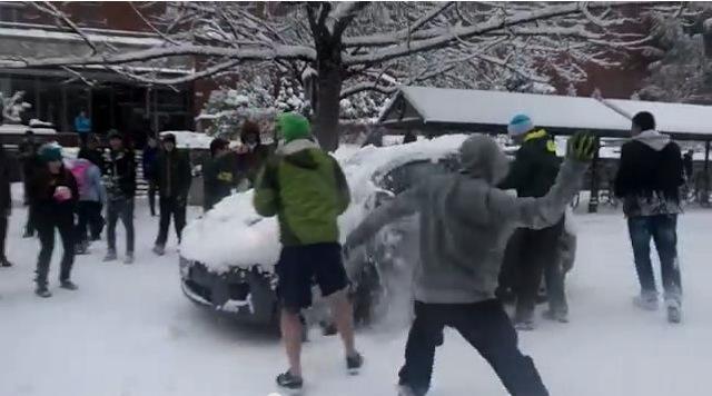 snowball fight uni