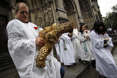 Photos Catholic Priests Blessing Animals Sick Chirpse