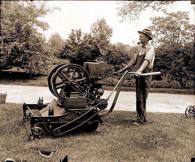 The Little Lawnmower