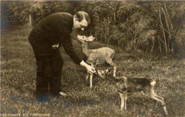 Historical Photos - Hitler