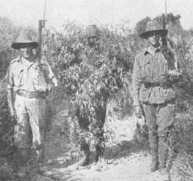 Historyical Photos - Gallipoli 1950 sniper camouflage