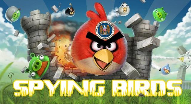 Spying Birds