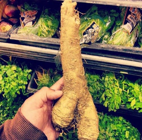 potatopenis5