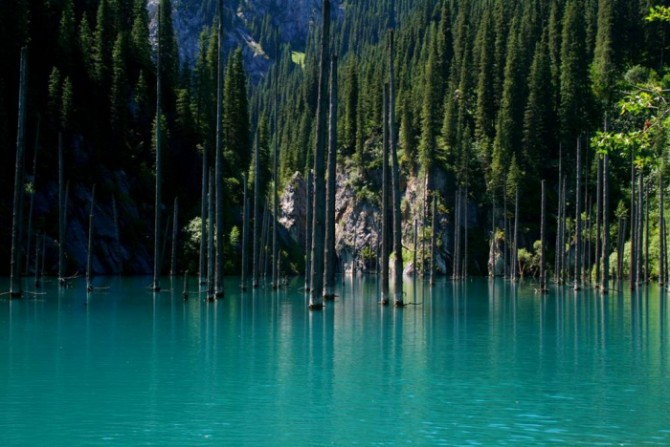 Sunken Forest in Kazakhstan - Lake Blue 2