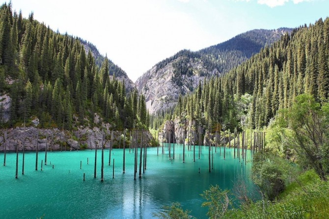 Sunken Forest in Kazakhstan - Lake Blue