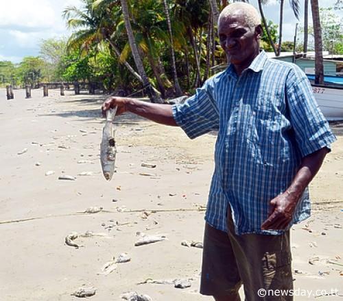 La Brea Coffee Beach Trinidad and Tobago Spill