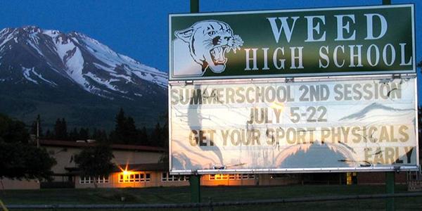 weed-high-school