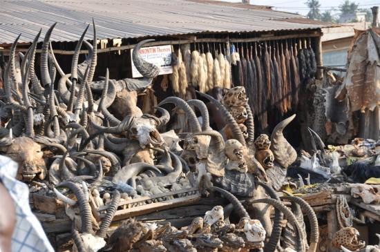 Akodessewa Voodoo Market Togo - skulls