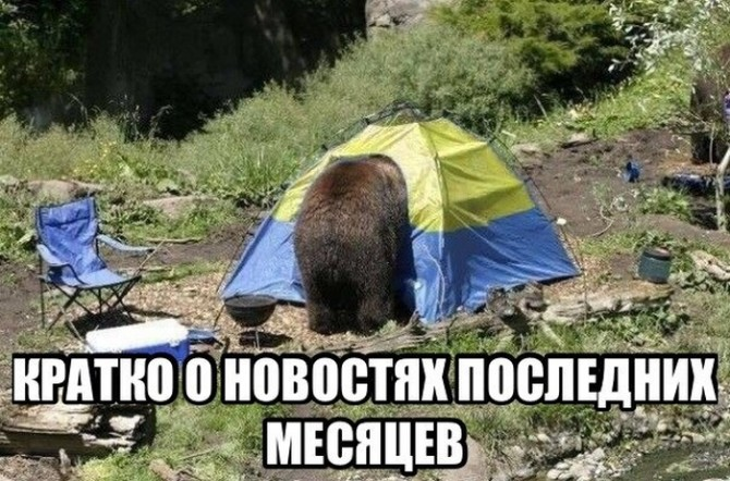 Awesome Photos From Russia With Love - bear camping